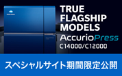TRUE FLAGSHIP MODELS